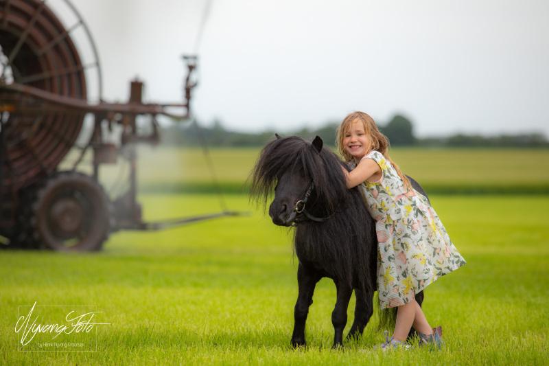 Heste-199